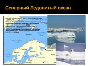 Северный Ледовитый океан 2/3 площади океана занимает шельф – континентальная
