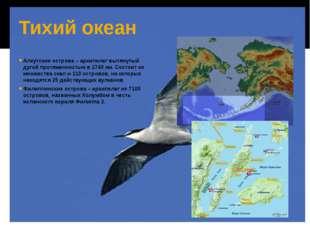 Тихий океан Алеутские острова – архипелаг вытянутый дугой протяженностью в 17