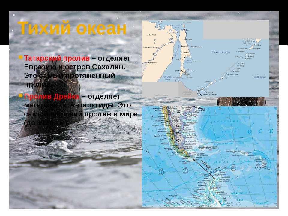 Тихий океан Татарский пролив – отделяет Евразию и остров Сахалин. Это самый п...
