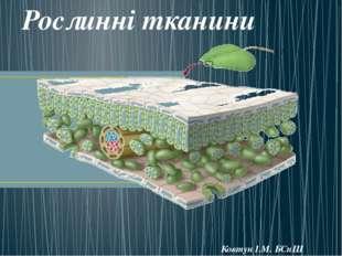 Рослинні тканини Ковтун І.М. БСпШ