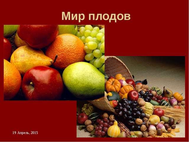 Мир плодов Сформулировать определение «Плод – это ….» и рассмотреть разнообра...