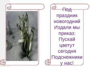 Под праздник новогодний Издали мы приказ: Пускай цветут сегодня Подснежники