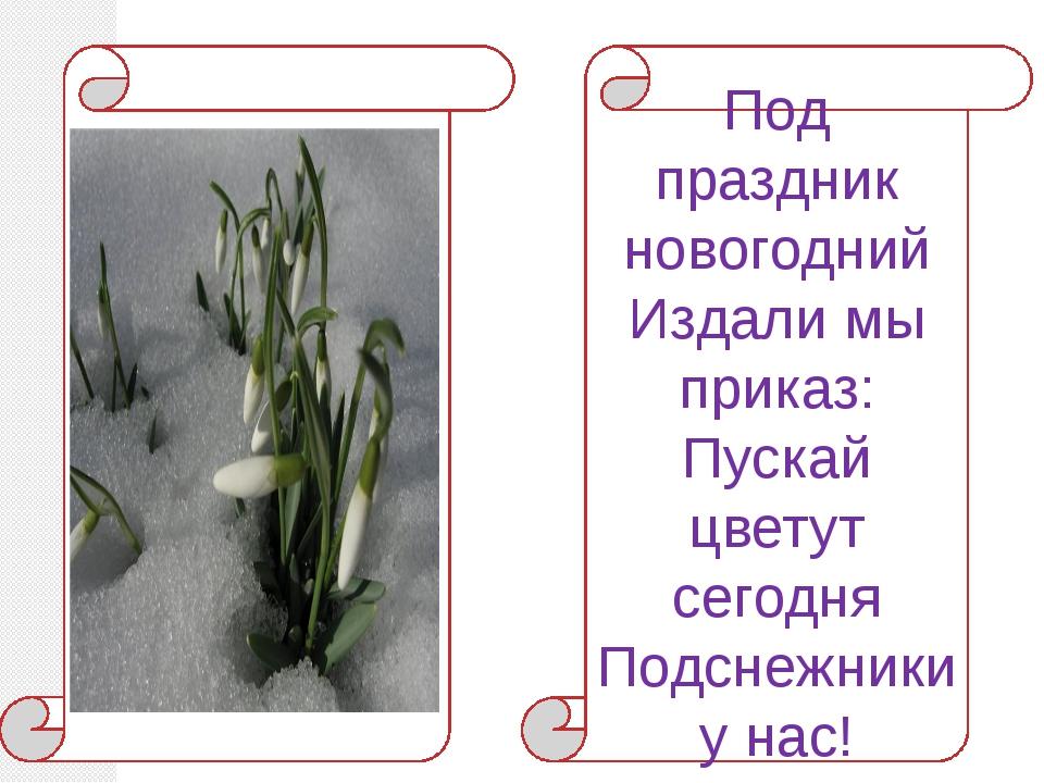 Под праздник новогодний Издали мы приказ: Пускай цветут сегодня Подснежники...