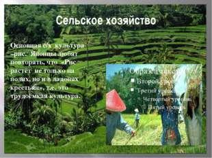 Сельское хозяйство Основная с/х культура –рис. Японцы любят повторять, что «Р