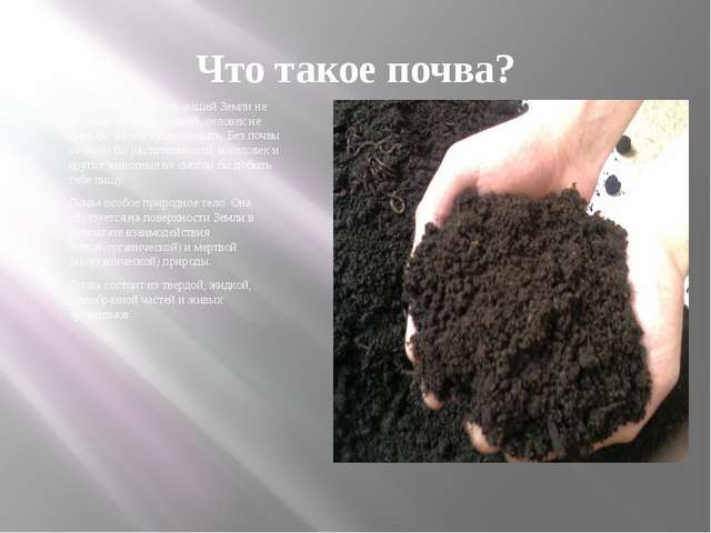 Что такое почва? Если бы поверхность нашей Земли не была бы покрыта почвой, ч...