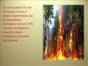 За последние 10 лет площадь лесов в мире сократилась на 94 миллиона гектаров.