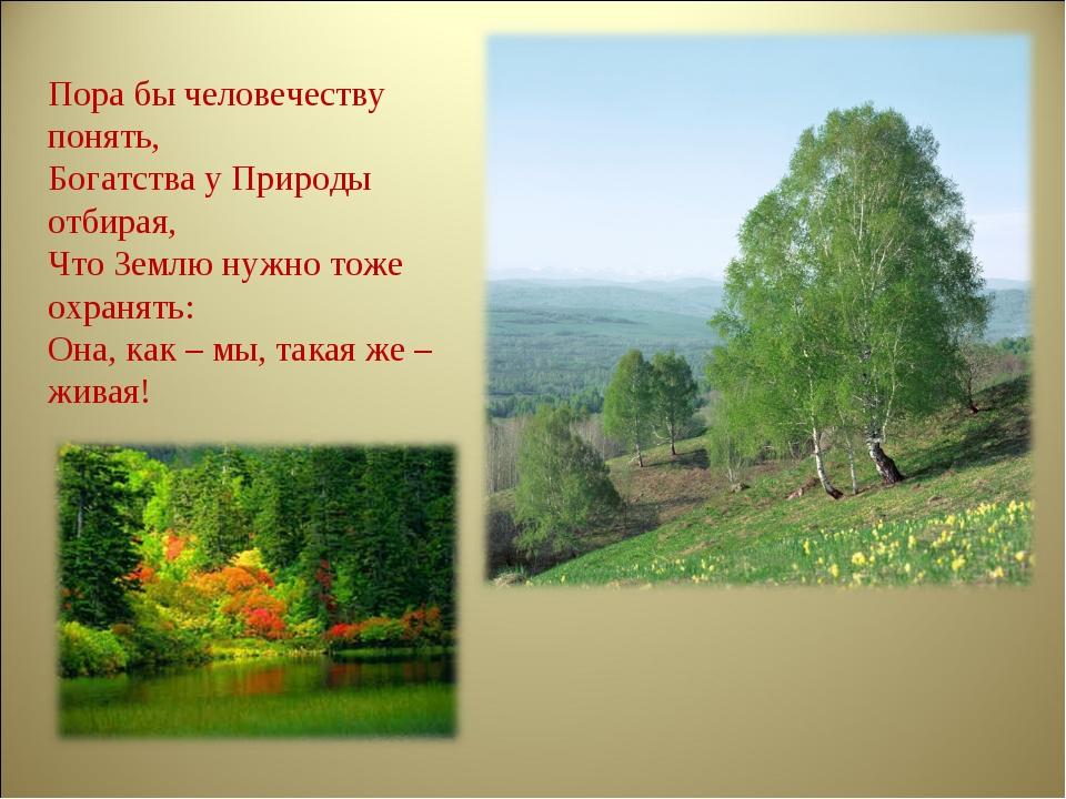 Пора бы человечеству понять, Богатства у Природы отбирая, Что Землю нужно тож...