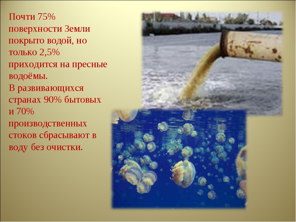 Почти 75% поверхности Земли покрыто водой, но только 2,5% приходится на пресн...