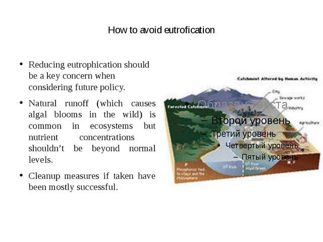 How to avoid eutrofication Reducing eutrophication should be a key concern w...