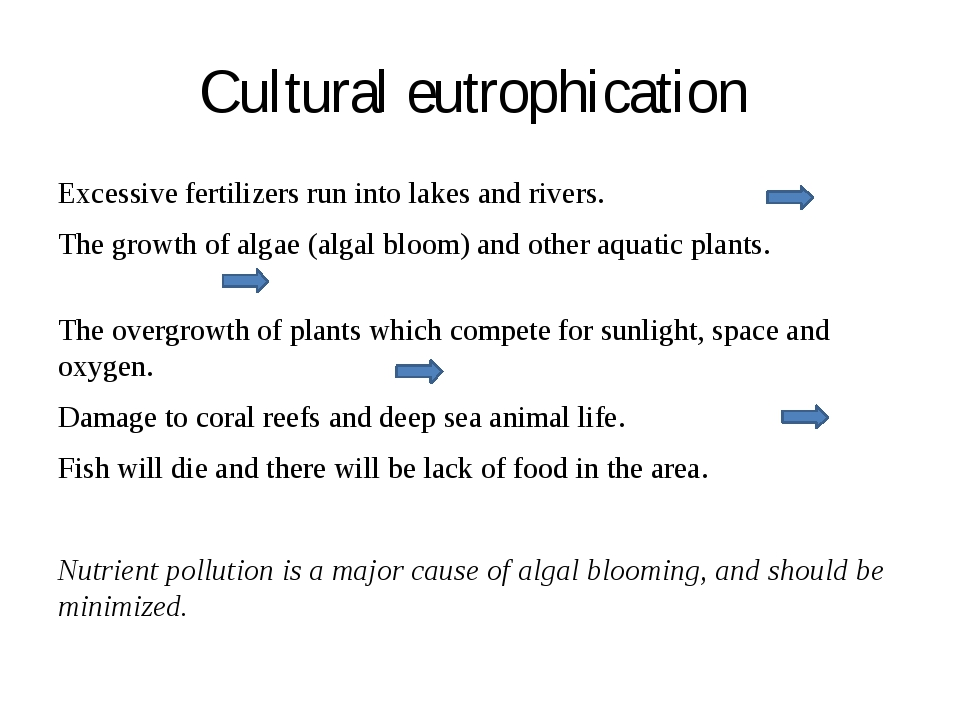 Cultural eutrophication Excessive fertilizers run into lakes and rivers. The...