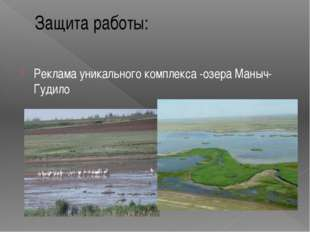 Защита работы: Реклама уникального комплекса -озера Маныч-Гудило