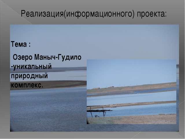 Реализация(информационного) проекта: Тема : Озеро Маныч-Гудило -уникальный пр...