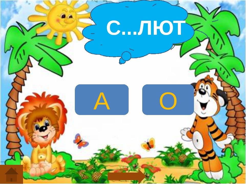 С...ЛЮТ А О