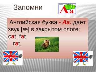 Запомни Английскaя буква - Aa. даёт звук[æ] в закрытом слоге: cat fat rat.