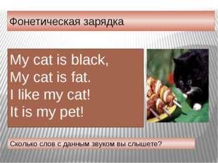 Фонетическая зарядка Сколько слов с данным звуком вы слышете? My cat is black