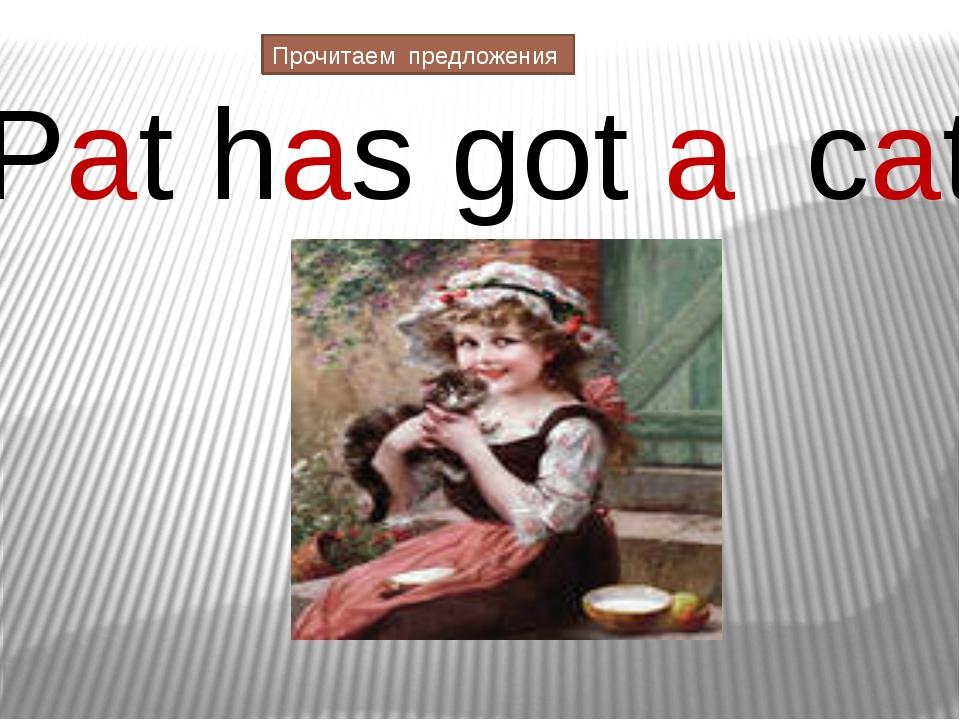 Pat has got a cat Прочитаем предложения