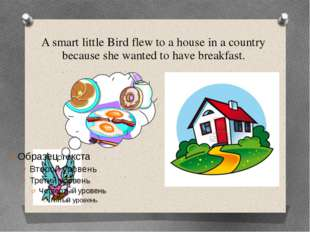 A smart little Bird flew to a house in a country because she wanted to have b