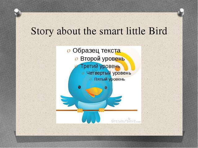 Story about the smart little Bird