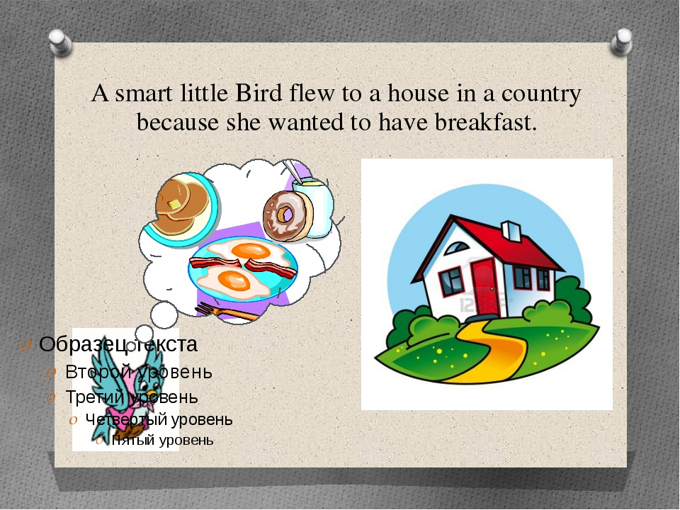 A smart little Bird flew to a house in a country because she wanted to have b...