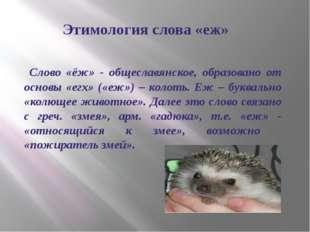 Этимология слова «еж» Слово «ёж» - общеславянское, образовано от основы «егх