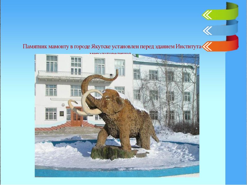 Памятник мамонту в городе Якутске установлен перед зданием Института мерзлот...
