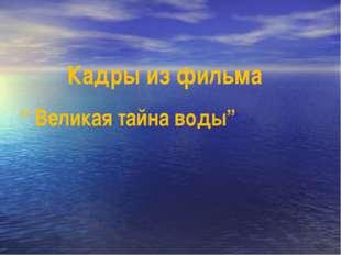 """Кадры из фильма """" Великая тайна воды"""""""