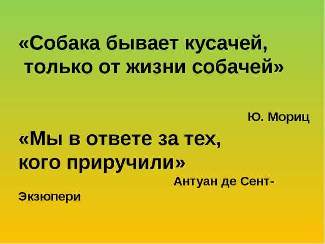 «Собака бывает кусачей, только от жизни собачей» Ю. Мориц «Мы в ответе за тех...