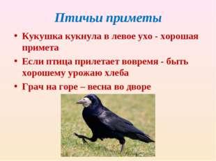 Птичьи приметы Кукушка кукнула в левое ухо - хорошая примета Если птица приле