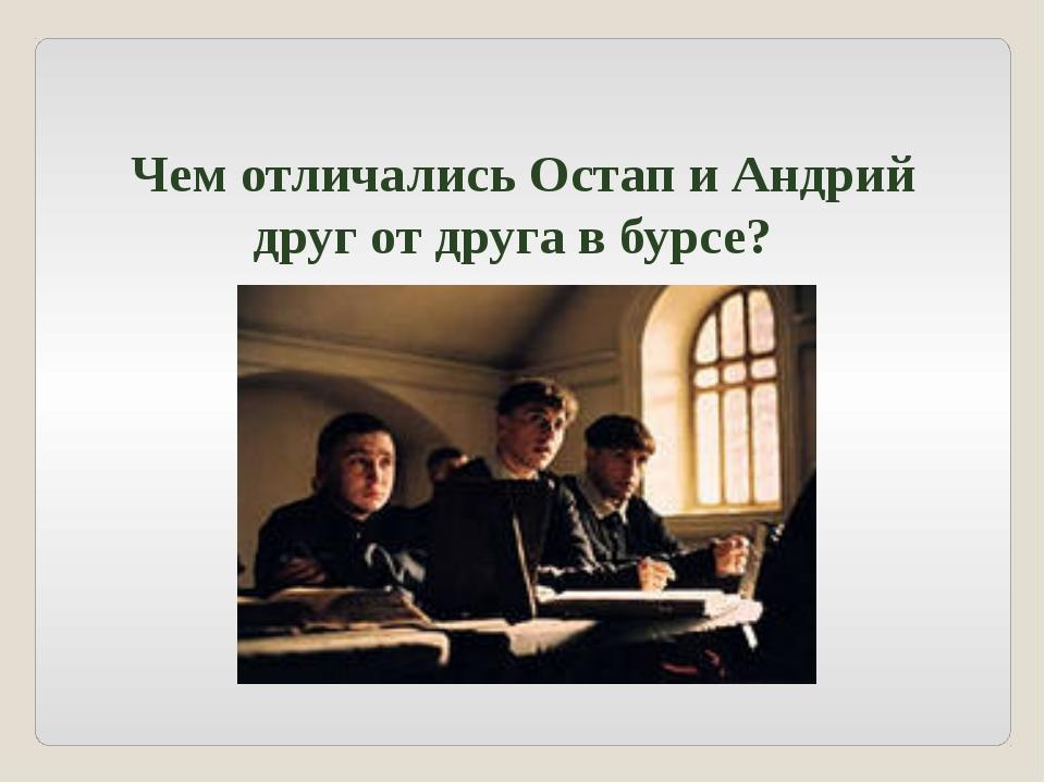 Чем отличались Остап и Андрий друг от друга в бурсе?