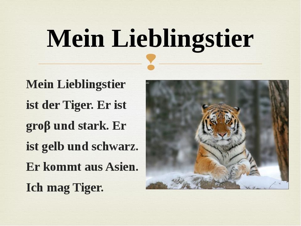 Mein Lieblingstier ist der Tiger. Er ist groβ und stark. Er ist gelb und schw...