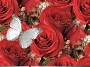 Вот причуда знатока! На цветок без аромата Опустился мотылёк.