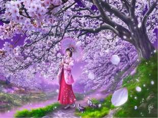 Вишен цветы Будто с небес упали - Так хороши! Кобаяси Исса