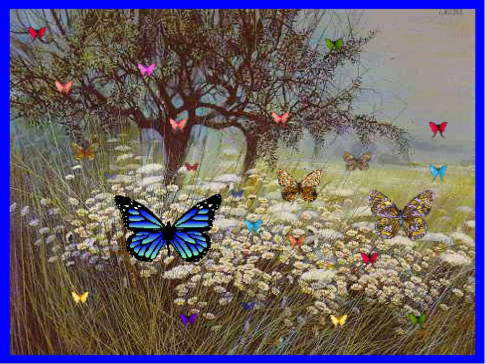 Бабочки полёт Будит тихую поляну В солнечных лучах.