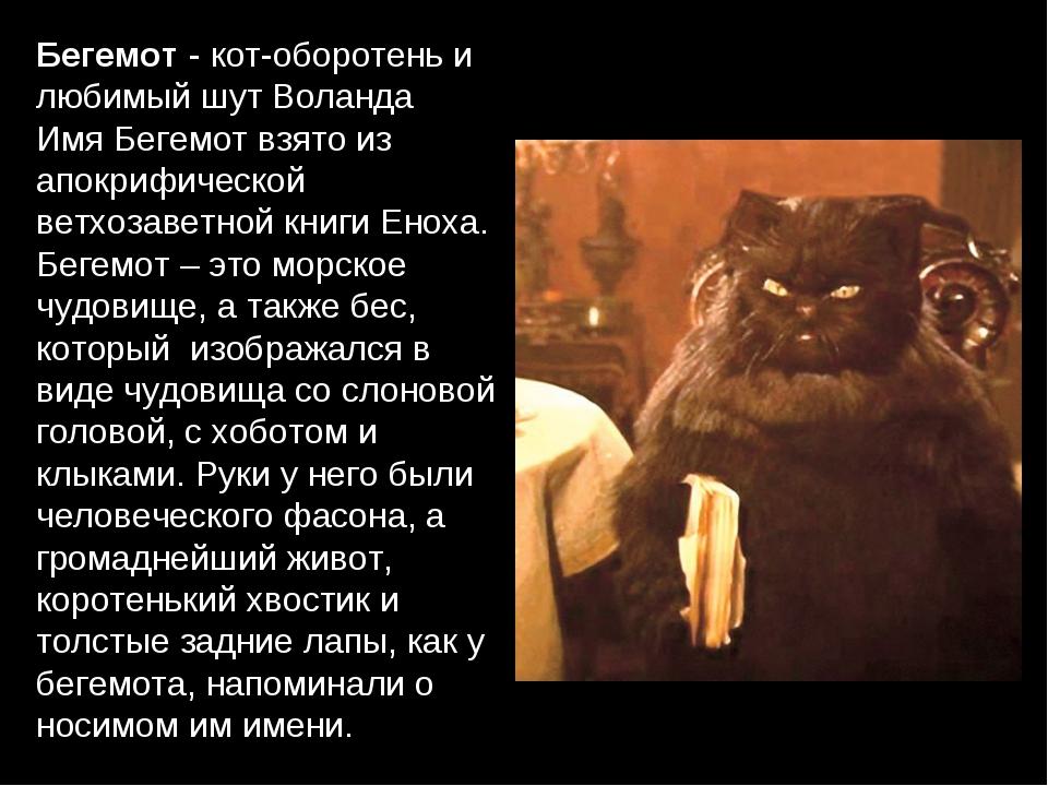 Бегемот - кот-оборотень и любимый шут Воланда Имя Бегемот взято из апокрифиче...