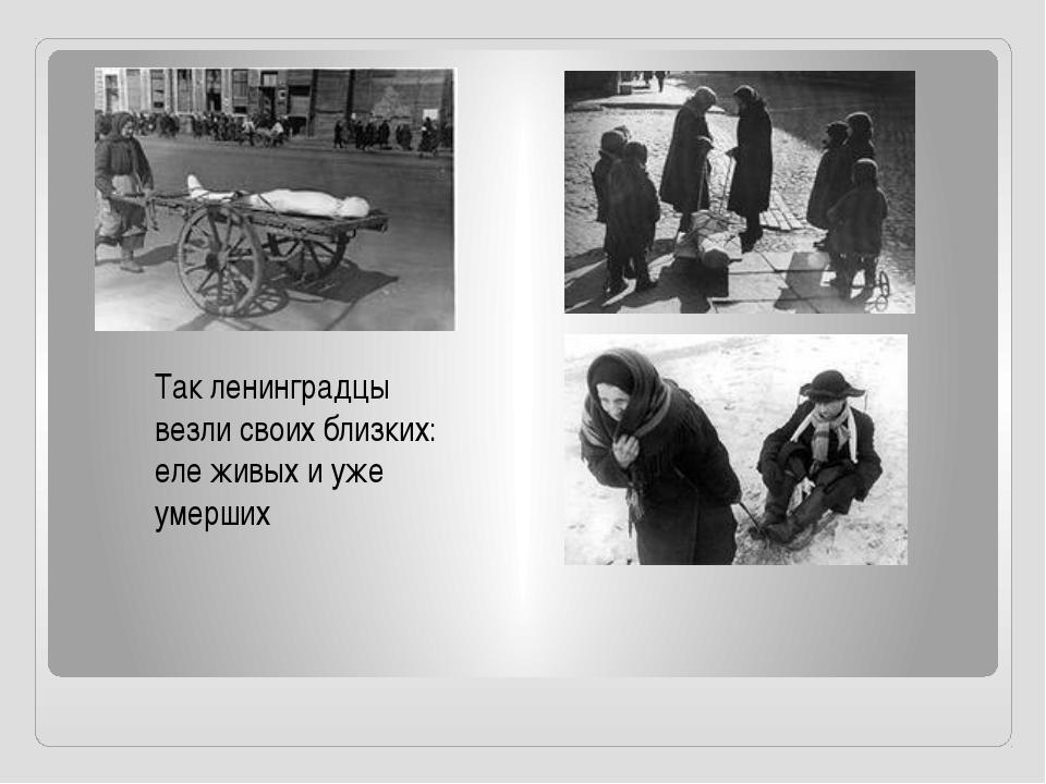 Так ленинградцы везли своих близких: еле живых и уже умерших