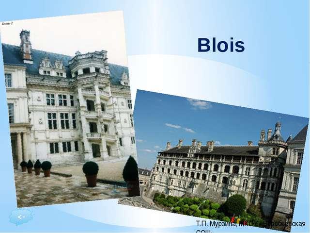 Résidence favorite des Rois de France à la Renaissance, le Château Royal de B...