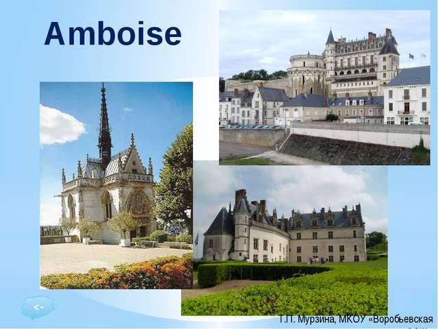 Le Château Royal d'Amboise: élégant château Renaissance, construit sur une vi...