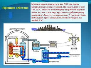 Принцип действия Многим может показаться что АЭС это очень вредный вид электр