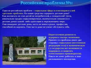 Одна из российских проблем – социальная сфера и относящаяся к ней «детская» п