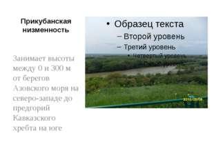 Прикубанская низменность Занимает высоты между 0 и 300 м от берегов Азовского