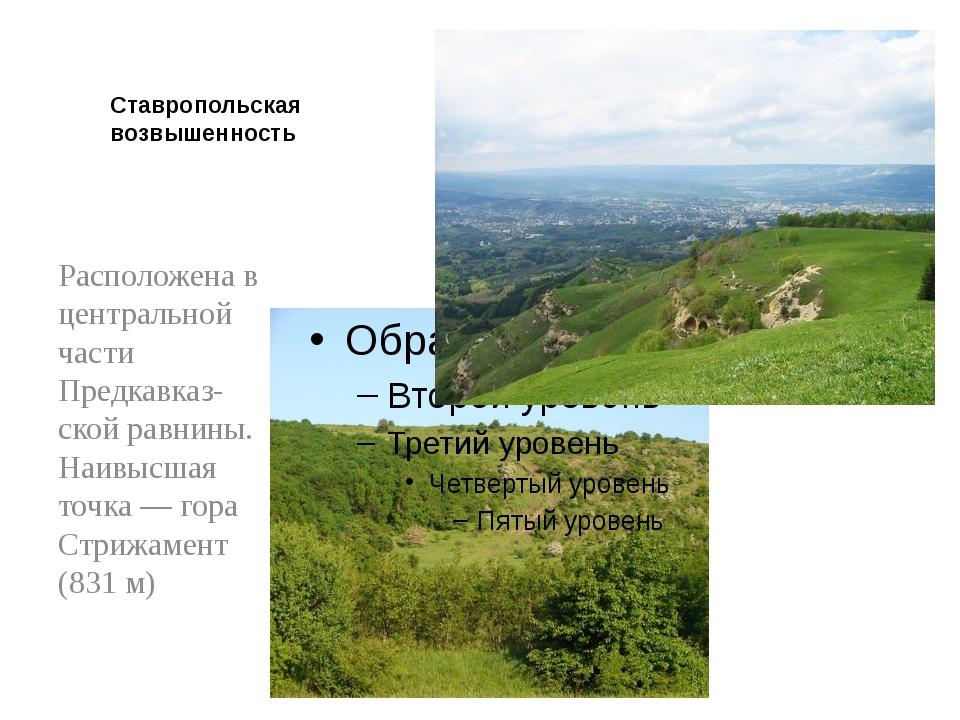 Ставропольская возвышенность Расположена в центральной части Предкавказ-ской...