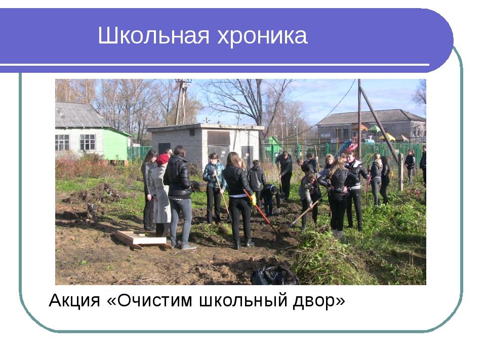 Акция «Очистим школьный двор» Школьная хроника