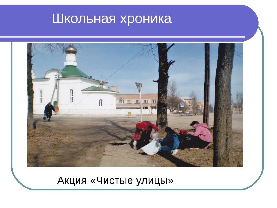 Акция «Чистые улицы» Школьная хроника