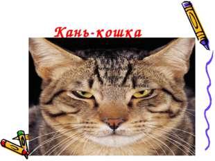 Кань-кошка