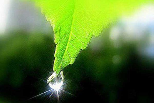 http://susanin.udm.ru/upload/iblock/fb8/fb8f12cd528fa697f6c8f12f079e89fb.jpg