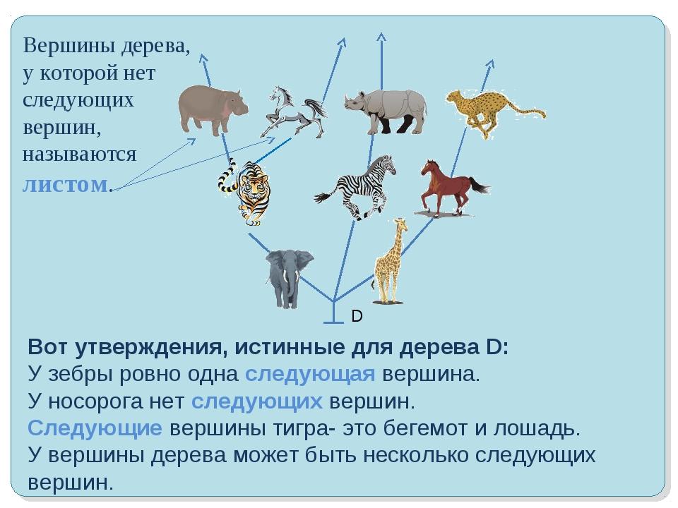 Вот утверждения, истинные для дерева D: У зебры ровно одна следующая вершина....