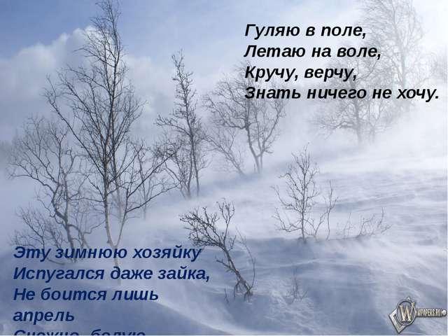 Гуляю в поле, Летаю на воле, Кручу, верчу, Знать ничего не хочу. Эту зимнюю х...