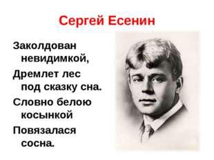 Сергей Есенин Заколдован невидимкой, Дремлет лес под сказку сна. Словно белою