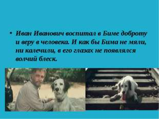 Иван Иванович воспитал в Биме доброту и веру в человека. И как бы Бима не мя