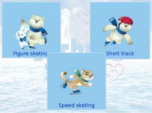 Figure skating Olympic Sports Short track Speed skating